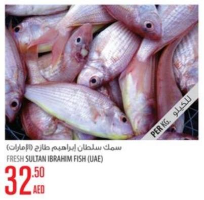 Fresh Sultan Ibrahim Fish (UAE)