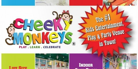 Cheeky Monkeys Kids Play & Party Venue