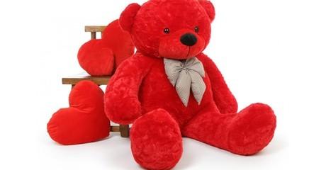 Giant Teddy Bear or Panda
