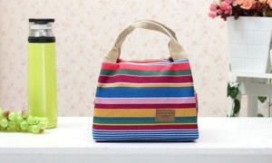 Insulated Canvas Lunch Bag
