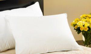 Duck Feather Pillows