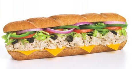 """6"""" Sub Sandwich"""