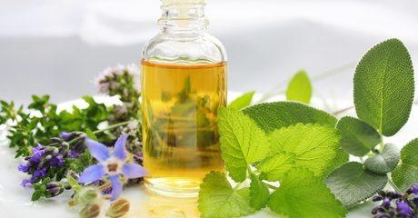 Online Master Herbalist Diploma