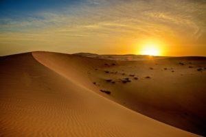 4x4 Desert Driving Experience