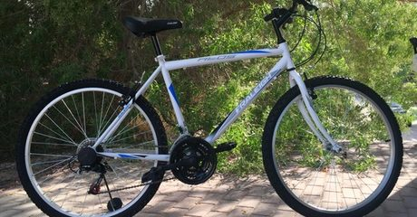Adult City Cruiser Bicycle 18 Speed