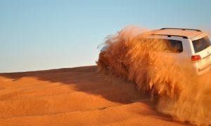 Desert Safari: Child (AED 200) or Adult (AED 315)