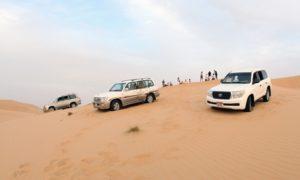 Half-Day Desert Safari