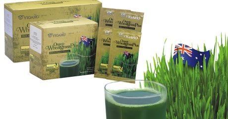 Organic Wheatgrass Plus
