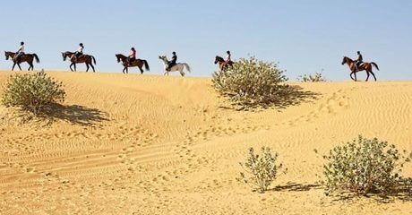 Riding Lesson and Desert Hack