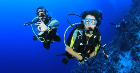 PADI or IDEA Diving Courses