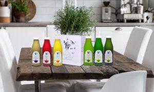 Alkaline Juice Cleansing Plan