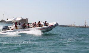 Sightseeing Speedboat Cruise
