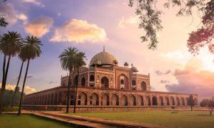 6-Night Tour of India