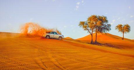 Abu Dhabi City Tour for One