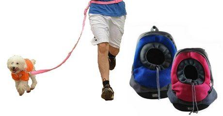Pet Walking Accessories
