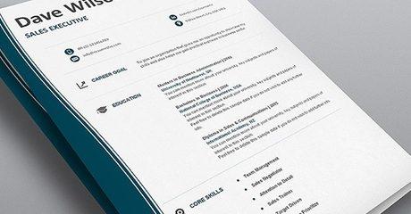 Resume and Job Hunt Templates