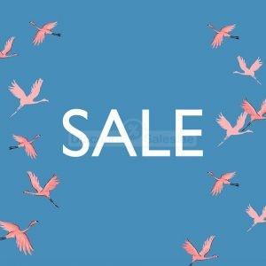 oasis-discount-sales-dubai-ffers
