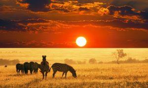 ✈ Kenya: 4-Night 4*/5* Eid Break with Flights