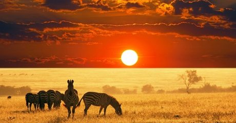 ✈ Kenya: 4-Night 4*/5* Eid Break with Flights
