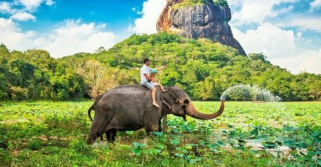 ✈ Sri Lanka: Up to 4-Night 4* Break with Tours and Transfers