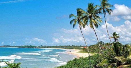 Sri Lanka: 4-Night Tour with Transfers