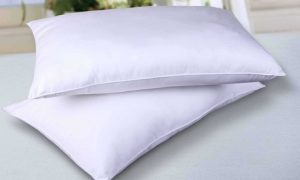 Two 300TC Microfibre Pillows