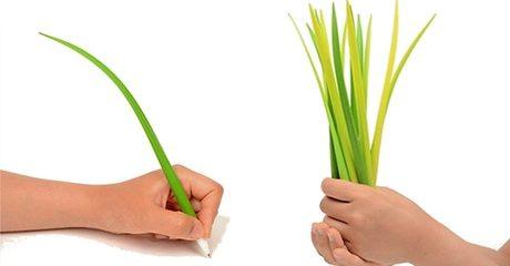 24 Grass Blade Pens