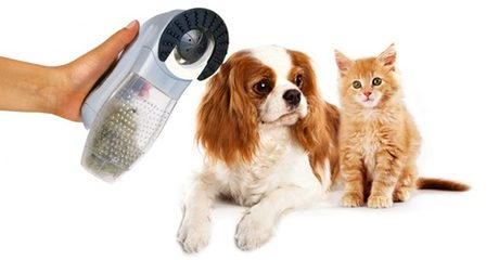 Cordless Hair Vaccum for Pets
