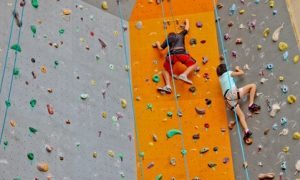 One-Hour Climbing Session