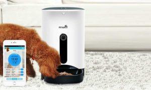 Smart Pet Feeder
