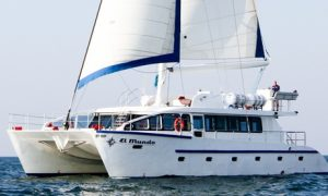Four-Hour Catamaran Cruise