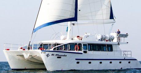 Four-Hour Catamaran Cruise