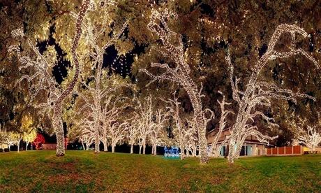 String of 100 Solar LED Lights