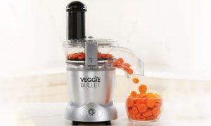 Veggie Bullet Food Processor