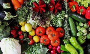 Balanced Meal Preparation Plan