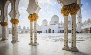 Abu Dhabi or Dubai Tour