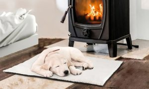 Self-Heating Pet Mat