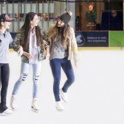 VIP Skating Experience