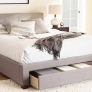 Contemporary Storage Platform Bed