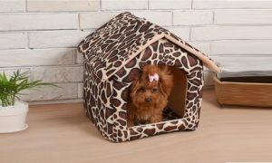 Cushion House Style Pet Bed
