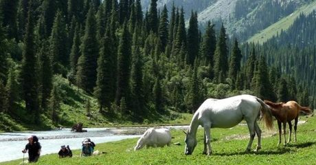 ✈ Kyrgyzstan: 4-Night 4* Eid Stay with Tours and Flights