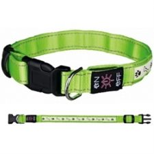 Trixie - Green USB Flash Collar
