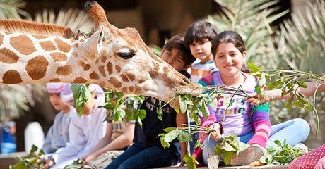 Abu Dhabi: 1 or 2 Nights with Zoo Tickets