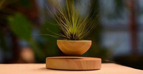 Magnetic Floating Plant Pot