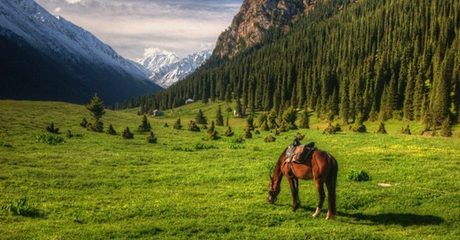✈Kyrgyzstan and Kazakhstan: 5-Night 4* Eid Stay with Tours and Flights