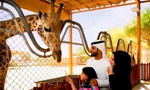 Al Ain: Family Break with Zoo Tickets