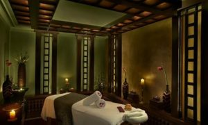Spa Treatment and Facility Access