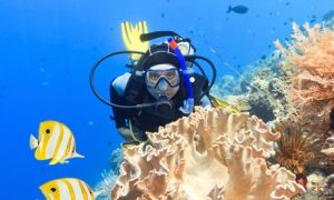 PADI Course with Certification