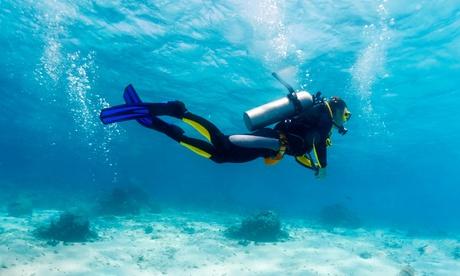 VIP Scuba Diving Tour