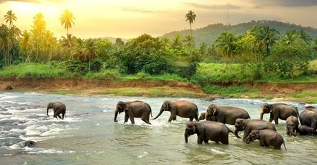 Sri Lanka: 2-Night Break with Tours